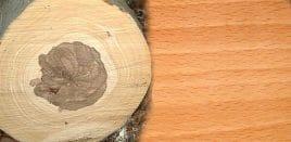 Holzboden - Buchenholz