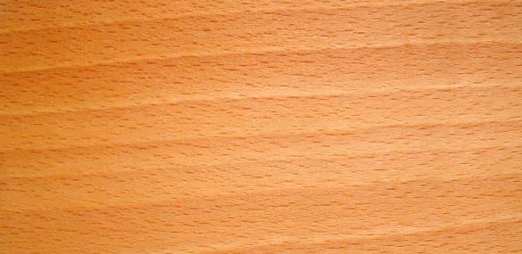 buche rotbuche l sst sich gut und vielseitig verarbeiten handwerker heimwerker. Black Bedroom Furniture Sets. Home Design Ideas