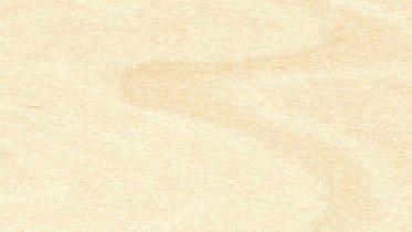 Birke - ein helles und leicht schimmerndes Holz