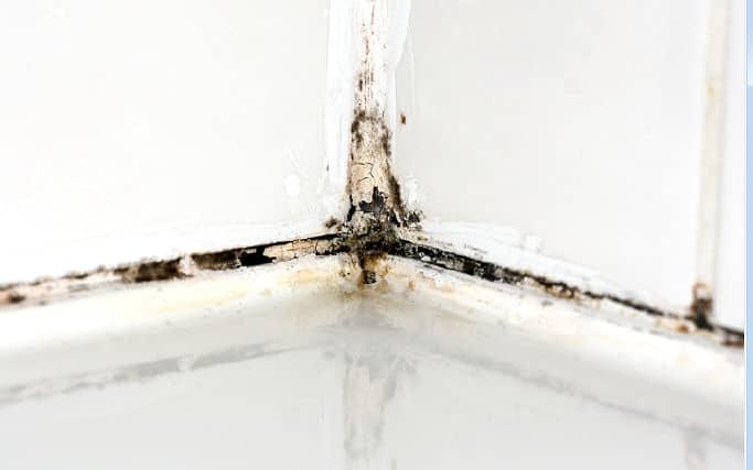 schimmel in der wand heimwerker tipps. Black Bedroom Furniture Sets. Home Design Ideas