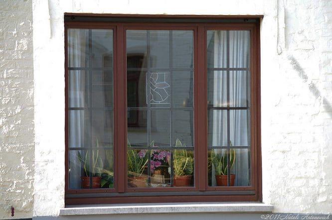 Ein Fenster, das man nicht so schnell durch ein neues pflegeleichtes ersetzen will.