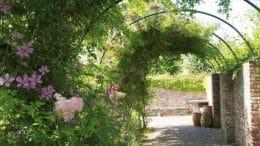 Strukturierendes Element im Garten: Bogengang im Garten