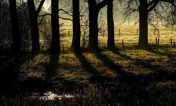 Morgenlicht - die Sonne geht auf