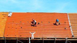 Für Dacharbeiten auf Dächern zwischen 20 und 60 ° sind Dachleitern nützlich