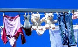 Wenn Sonne und Wolken nicht mitspielen, kann Wäsche trocknen schon mal dauern.