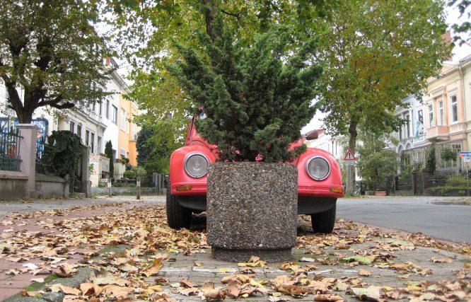 Pflanzkübel aus Stein in der Stadt