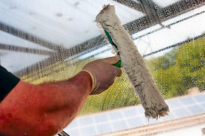 Fenster Putzen - sieht nach Profi aus