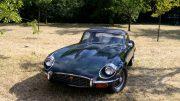 Jaguars sind besonders begehrte Oldtimer