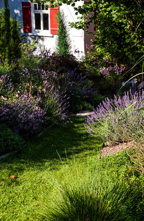 Den Garten verschönern