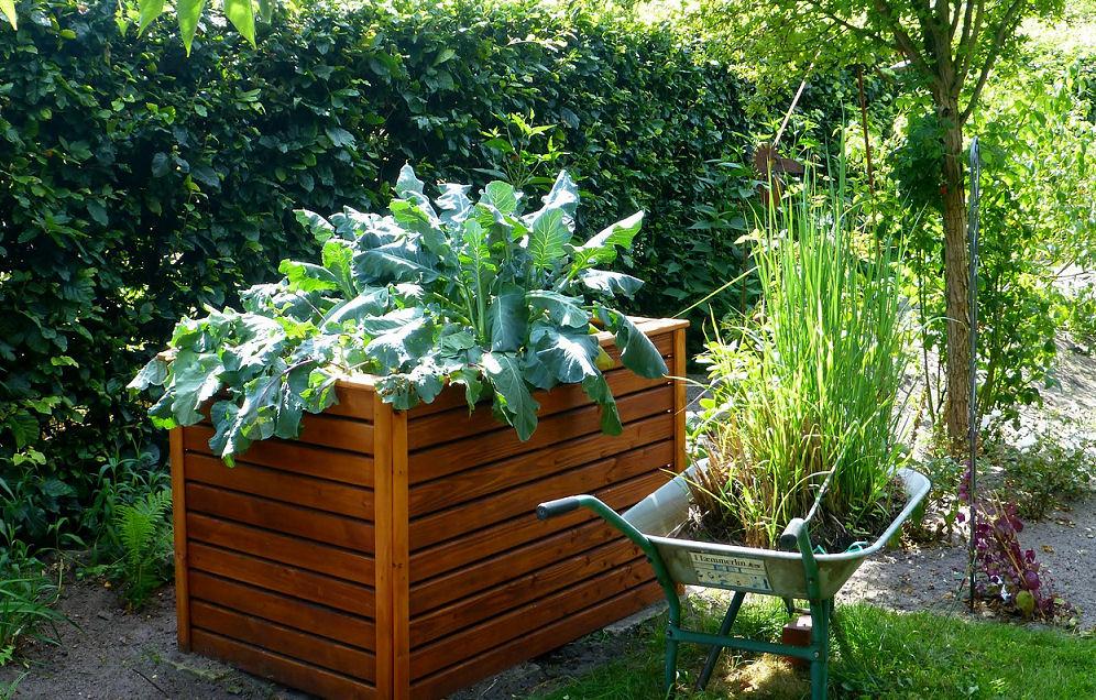 Hochbeet Selbst Bauen Gewusst Wie Heimwerker Tipps