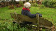 den Garten verschönern - ganz in Ruhe