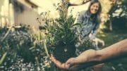 Der eigene Garten bedeutet viel Arbeit