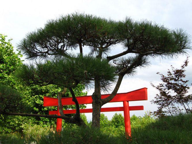 Japanischer Garten, typisch sind schlichte Elemente mit Liebe zum Detail