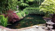 Japanischer Garten_ Typische Stilelemente