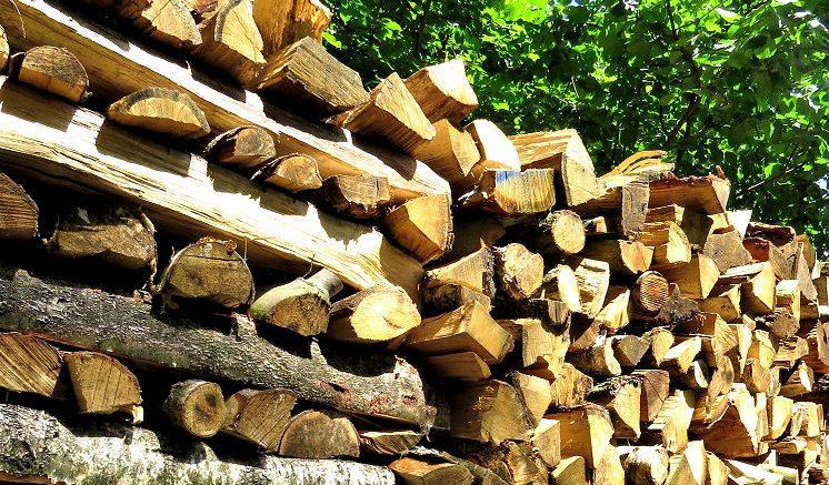 Regeneratives Heizen - Holz gehört zu den nachwachsenden Brennstoffen