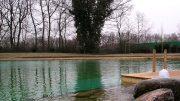 Schwimmteich bauen lassen - wenn er groß ist wie dieser.