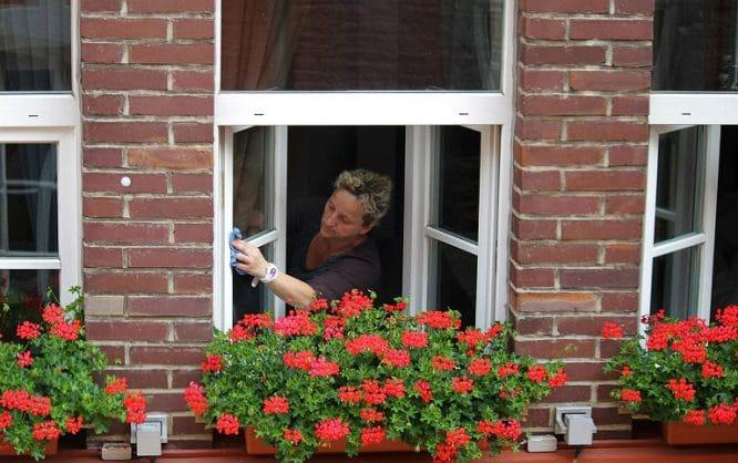 Fenster richtig putzen und am besten dabei auch gleich die Dichtungen pflegen