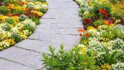 Steinplatten im Garten am besten mit Soda reinigen