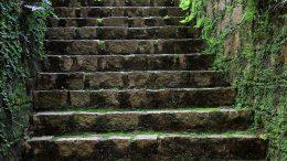 Treppenarten im Garten und Treppe berechnen: Die Stufen dieser Treppe sind recht hoch, höher als 15 cm bestimmt.
