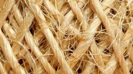 Wärmedämmung mit Hanf - eine robuste und schadfreie Faser