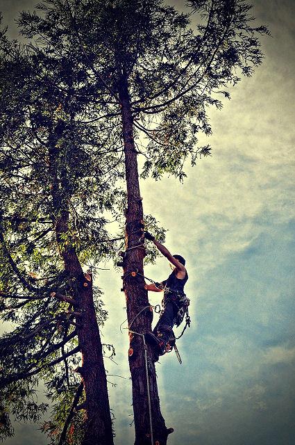Bei Baumarbeiten ist Sicherheit besonders angesagt.