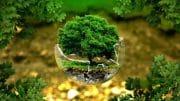 umweltfreundlich - der Umwelt zuliebe