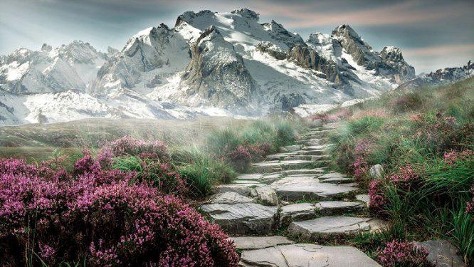 Wanderweg durch Alpen Landschaft