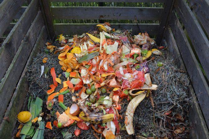 Abfall, der super gut geeignet für den Kompost ist