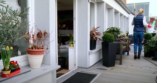 WPC-Dielen reinigen - dafür reicht meist schon Wasser und Spülmittel.