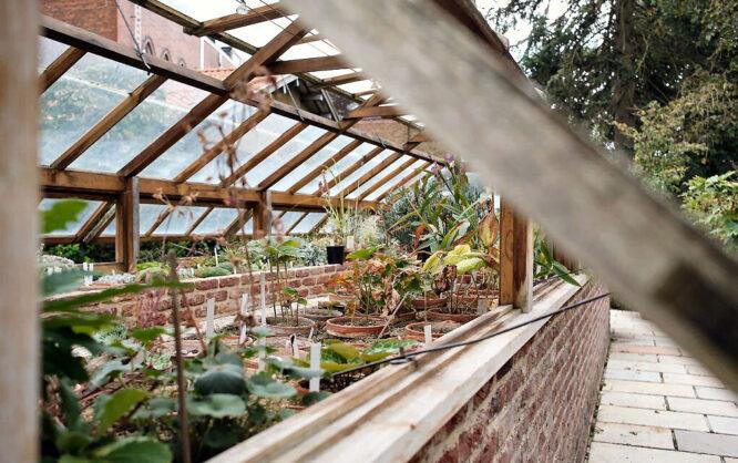 Egal welches Gewächshaus im Garten man haben will, es sollte auf jeden Fall eine gute Belüftungstechnik haben.