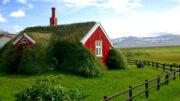 Grasdach auf rotem Haus - was für ein Dach!